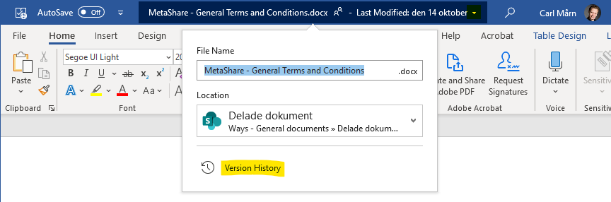 """The link to a document's """"Version History"""" from Microsoft Word"""